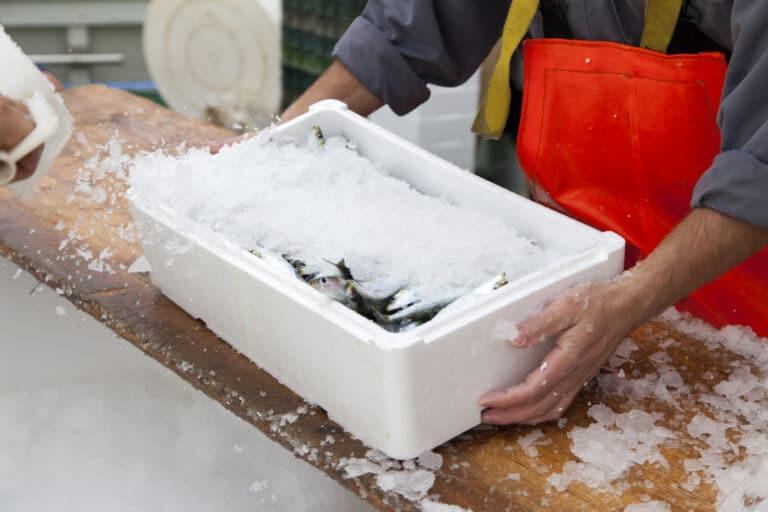 บริการขนส่งแบบไหน เหมาะกับขนส่งอาหารทะเลแช่แข็ง