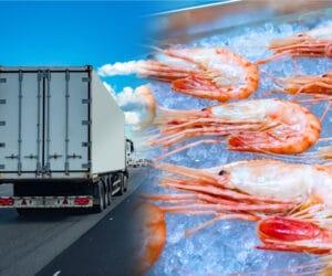 อยากส่งอาหารทะเลแช่แข็ง ไปต่างจังหวัด ทำอย่างไรดี
